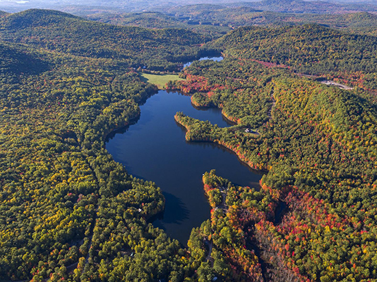 Breathtaking Aerial Views of the Pond
